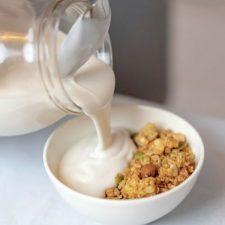 Mad Millie - Coconut Yoghurt Thickener 100g