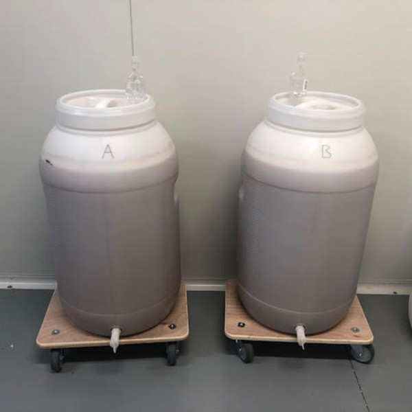 Stage Two Fermenting Beer